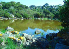 The nuragic lake of Grutt Acqua