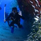 Bungalow in Sardinia and diving with Isla Diving